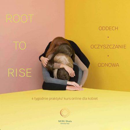 ROOT TO RISE // EDYCJA WIOSENNA
